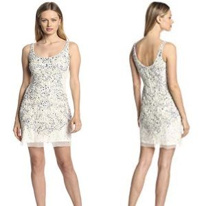 ADRIANA PAPELL Ivory Silver Beaded Formal Dress